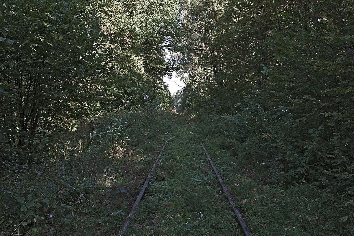 lost track #25, poland, 2011 (station wolfsschanze, hitler's hideout and headquarter during ww2 - today polish territory)